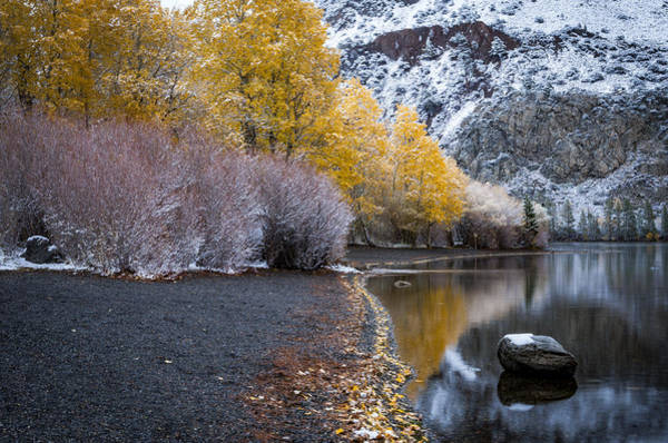 Photograph - Fall And Winter At Silver Lake by Cat Connor