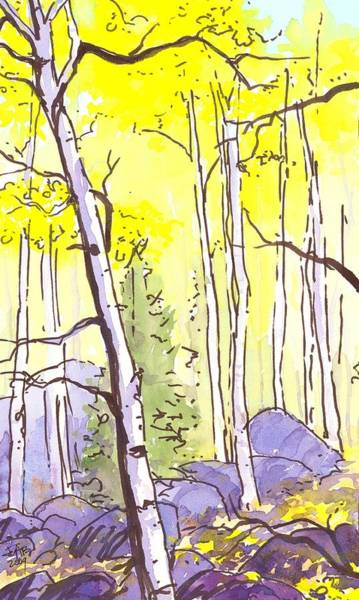 Painting - Fall Aspen And Shadows by Cameron Berglund