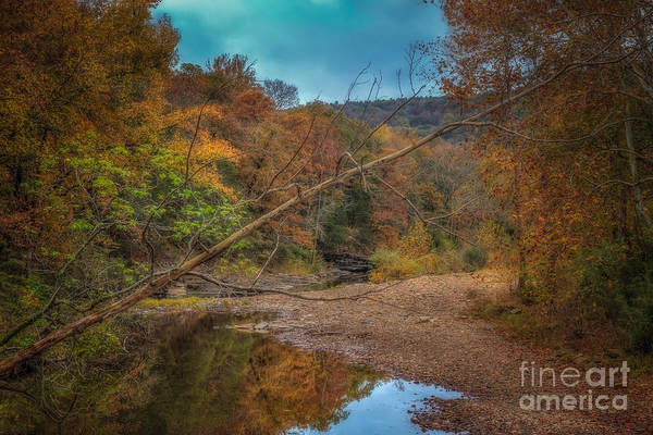 Photograph - Fall At Barkers Gap by Larry McMahon