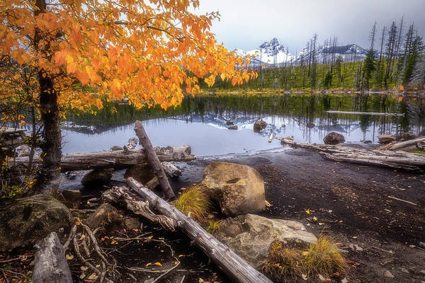 Wall Art - Photograph - Fall At Round Lake by Cat Connor