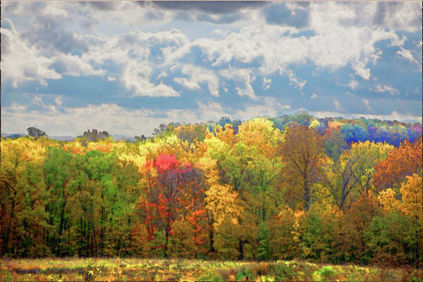Photograph - Fall At Shaw by David Coblitz