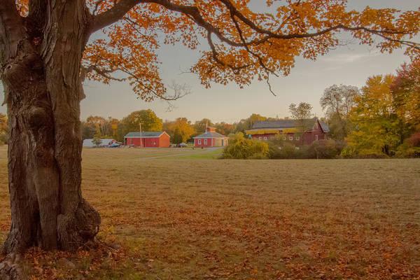 Acer Saccharum Photograph - Fall At The Farm by Brian MacLean