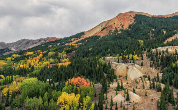 Photograph - Fall At Yankee Girl Mine by Loree Johnson