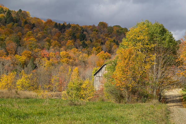 Photograph - Fall Barn by Frank Morales Jr