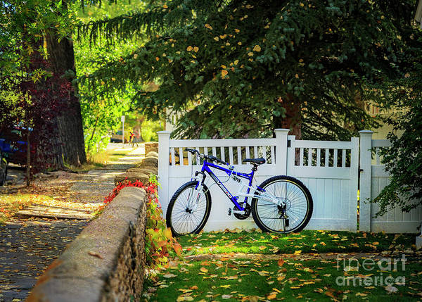 Photograph - Fall Bicycle Of Laramie by Craig J Satterlee
