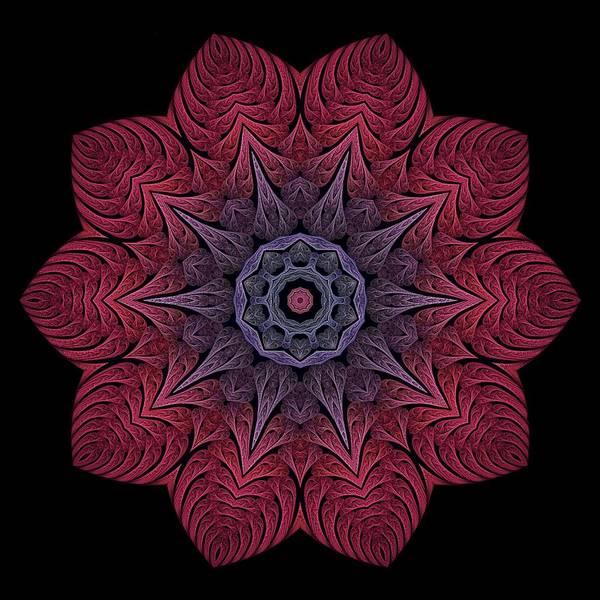 Digital Art - Fall Blossom Zxk-10-43 by Doug Morgan