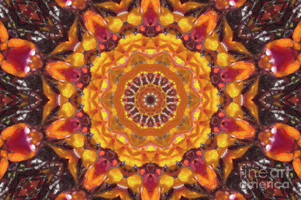 Digital Art - Fall Branches Kaleidoscope by Donna L Munro