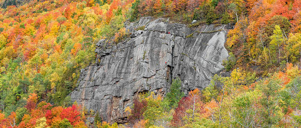 Photograph - Fall Climbing by Brad Wenskoski