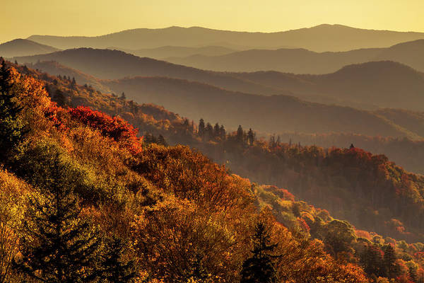 Photograph - Fall Color Morning In The Great Smoky Mountains by Teri Virbickis