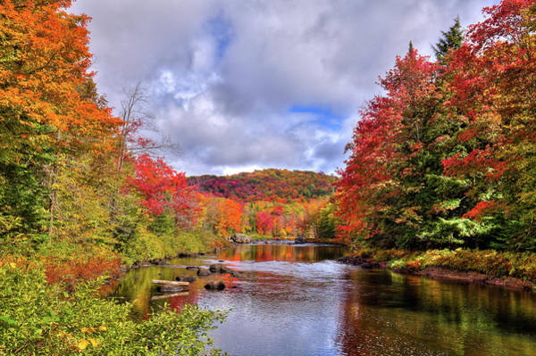 Photograph - Fall Color On The River by David Patterson