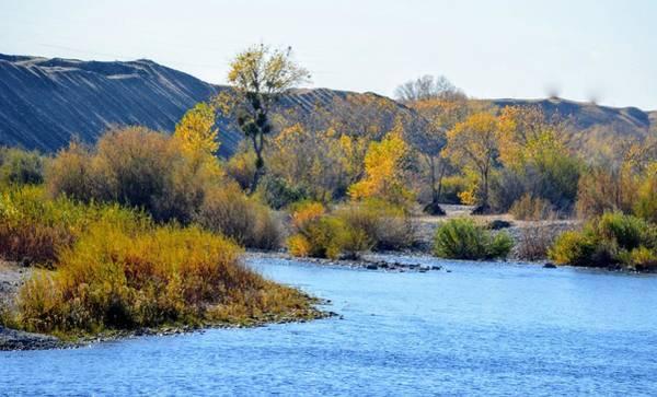 Photograph - Fall Color On The Yuba  by AJ Schibig