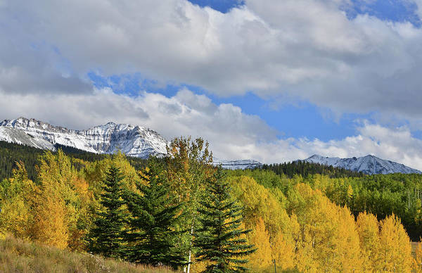 Photograph - Fall Colors Along Highway 145 Near Telluride by Ray Mathis