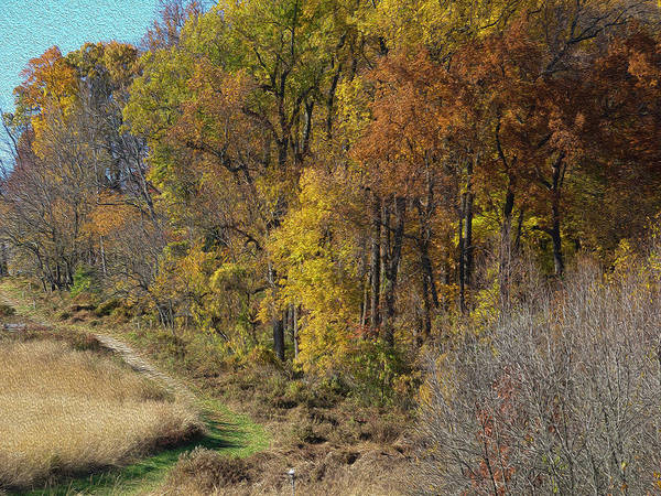 Photograph - Fall Colors As Oil by Paul Ross