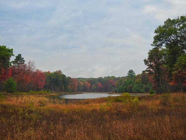 Photograph - Fall Colors At Gladwin 4459 by Wesley Elsberry