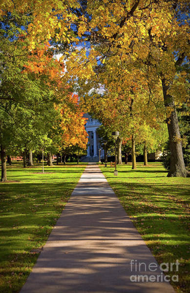 Photograph - Fall Colors At Lawrence University In Appleton, Wisconsin by Sam Antonio Photography
