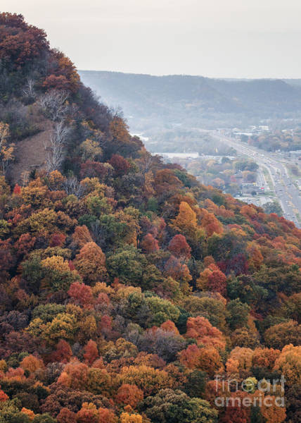 Photograph - Fall Colors Bluff Winona Minnesota by Kari Yearous