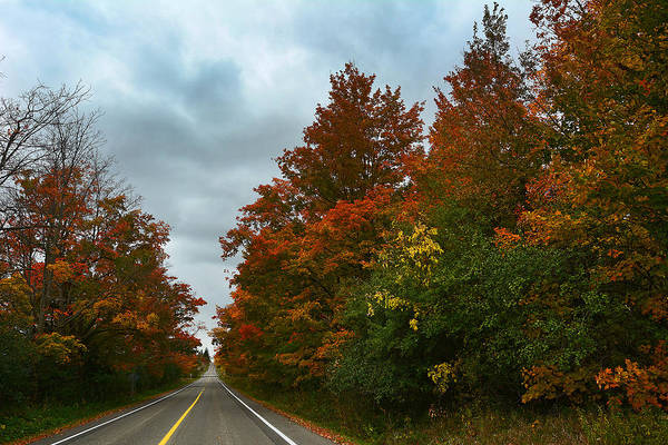 Photograph - Fall Colors Dramatic Sky by Steve Somerville