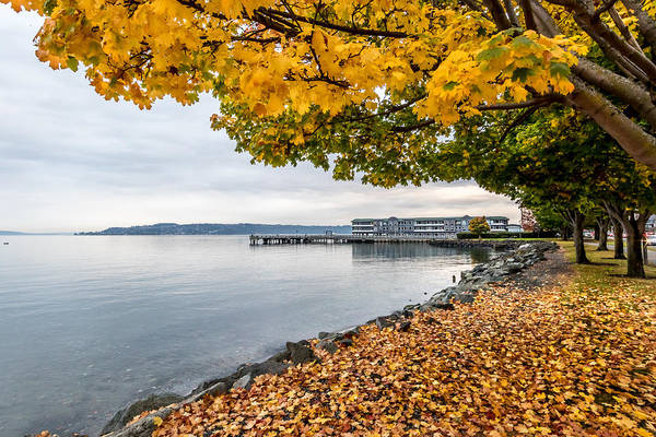Photograph - Fall Colors Framing Commencement Bay by Rob Green