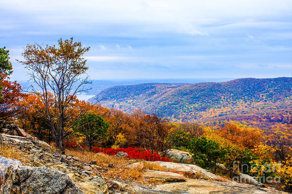 Wall Art - Photograph - Fall Colors From Bear Mountain by William Rogers