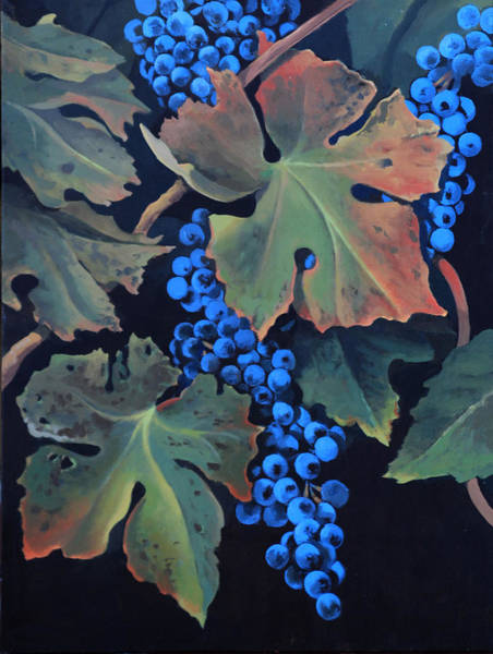Painting - Fall Colors In Vineyard by Cliff Wassmann