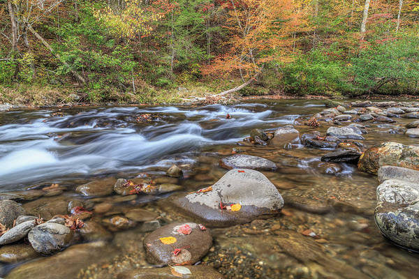 Photograph - Fall Colors Little River by Paul Schultz