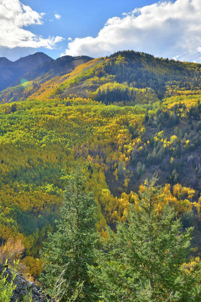 Photograph - Fall Colors On Sunshine Mountain by Ray Mathis