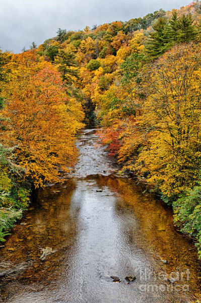 Linville Falls Wall Art - Photograph - Fall Colors Over Linville River by Dan Carmichael