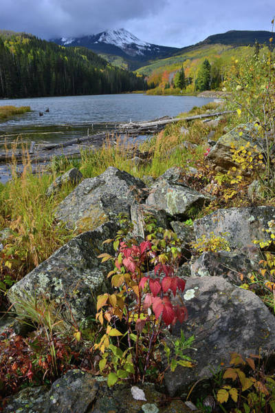 Photograph - Fall Comes To Woods Lake by Ray Mathis