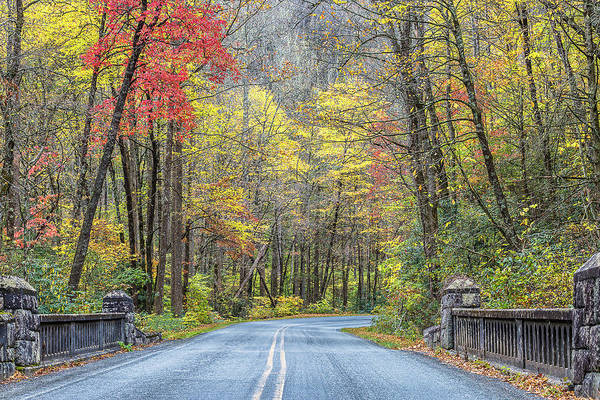 Photograph - Fall Day In Pisgah National Forest by Donnie Whitaker