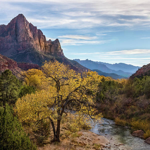 Photograph - Fall Evening At Zion by James Woody