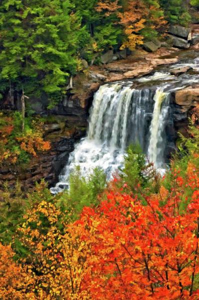 Steve Harrington Photograph - Fall Falls by Steve Harrington