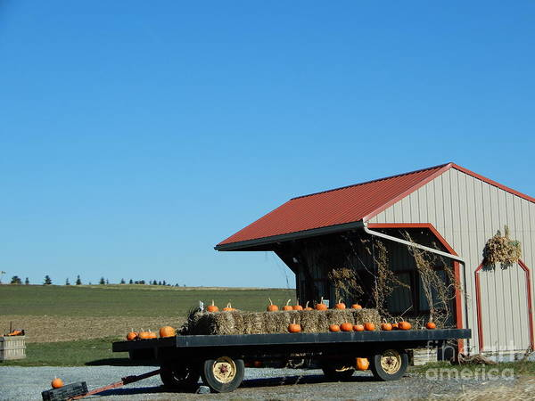Photograph - Fall Farmstand by Christine Clark