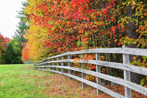 Photograph - Fall Fence by Robert Clifford