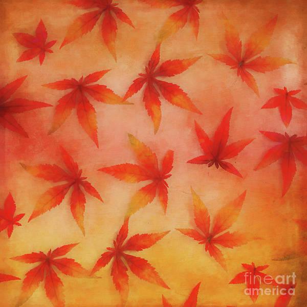 Bright Colours Mixed Media - Fall Fire by Amanda Lakey