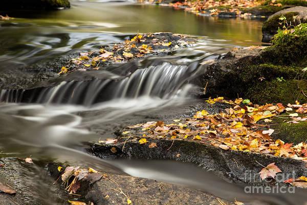 Photograph - Fall Flow by Karin Pinkham