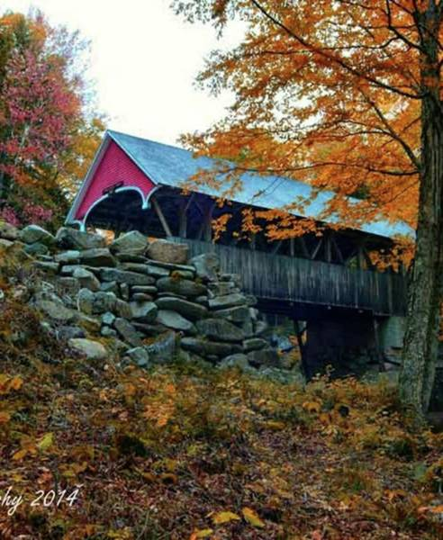 Wall Art - Photograph - Fall Foliage - Franconia Notch & Flume by Jeff Folger