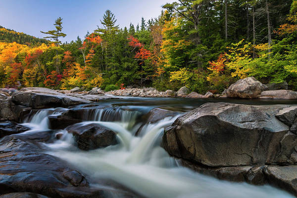 Fall Foliage Along Swift River In White Mountains New Hampshire  Art Print