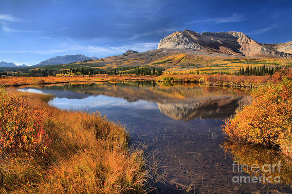 Photograph - Fall Foliage And Mountain Reflections by Adam Jewell