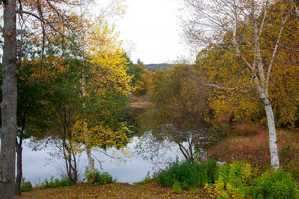 Photograph - Fall Foliage At Houghtons Pond by Brian MacLean