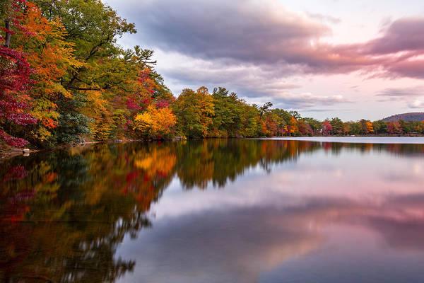 Photograph - Fall Foliage Reflection by Mihai Andritoiu