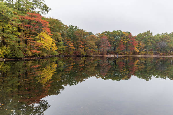 Photograph - Fall Foliage Reflections by Brian MacLean