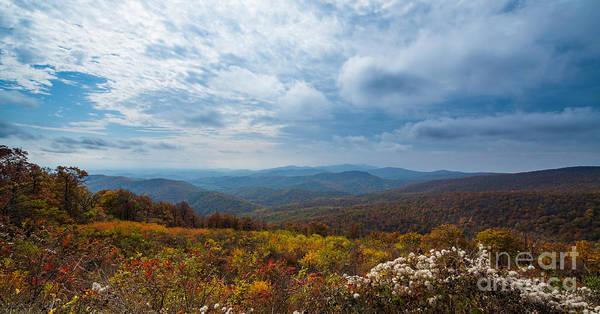 Shenandoah Wall Art - Photograph - Fall Foliage Skyline Drive Virginia  by Michael Ver Sprill