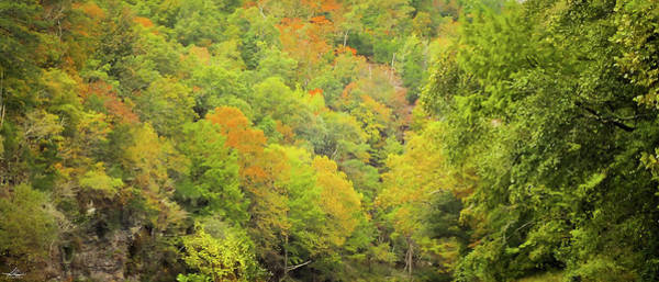Photograph - Fall Has Come To The Lower Mountain Fork River by Philip Rispin