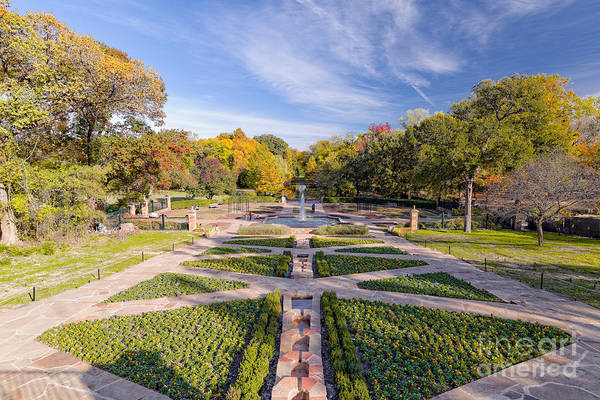 Photograph - Fall Image Of The Fort Worth Botanical Garden - Oval Rose Garden - Fort Worth Texas by Silvio Ligutti