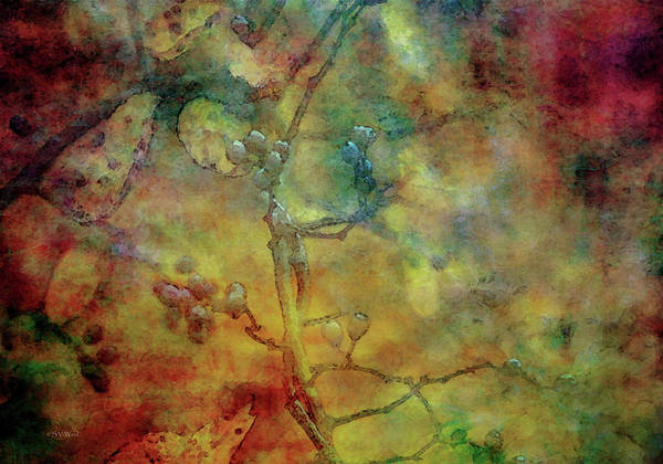 Photograph - Fall Impression 6582 Idp_3 by Steven Ward