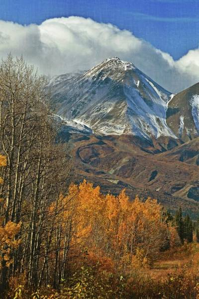 Photograph - Fall In British Columbia by Marty Koch