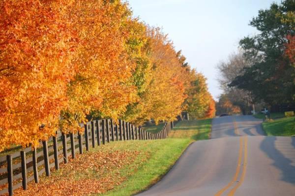 Fall In Horse Farm Country Art Print