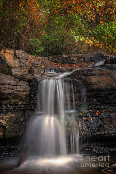 Photograph - Fall In Love by Larry McMahon