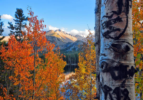 Fourteener Photograph - Fall In Rocky Mountain National Park by Ronda Kimbrow
