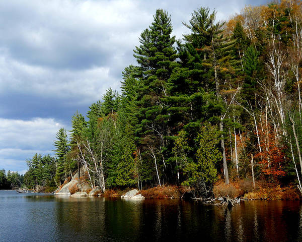 Photograph - Fall In The Adirondacks 5 by Maggy Marsh